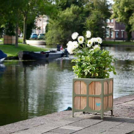 planter for Leiden Bureau Stoep 2