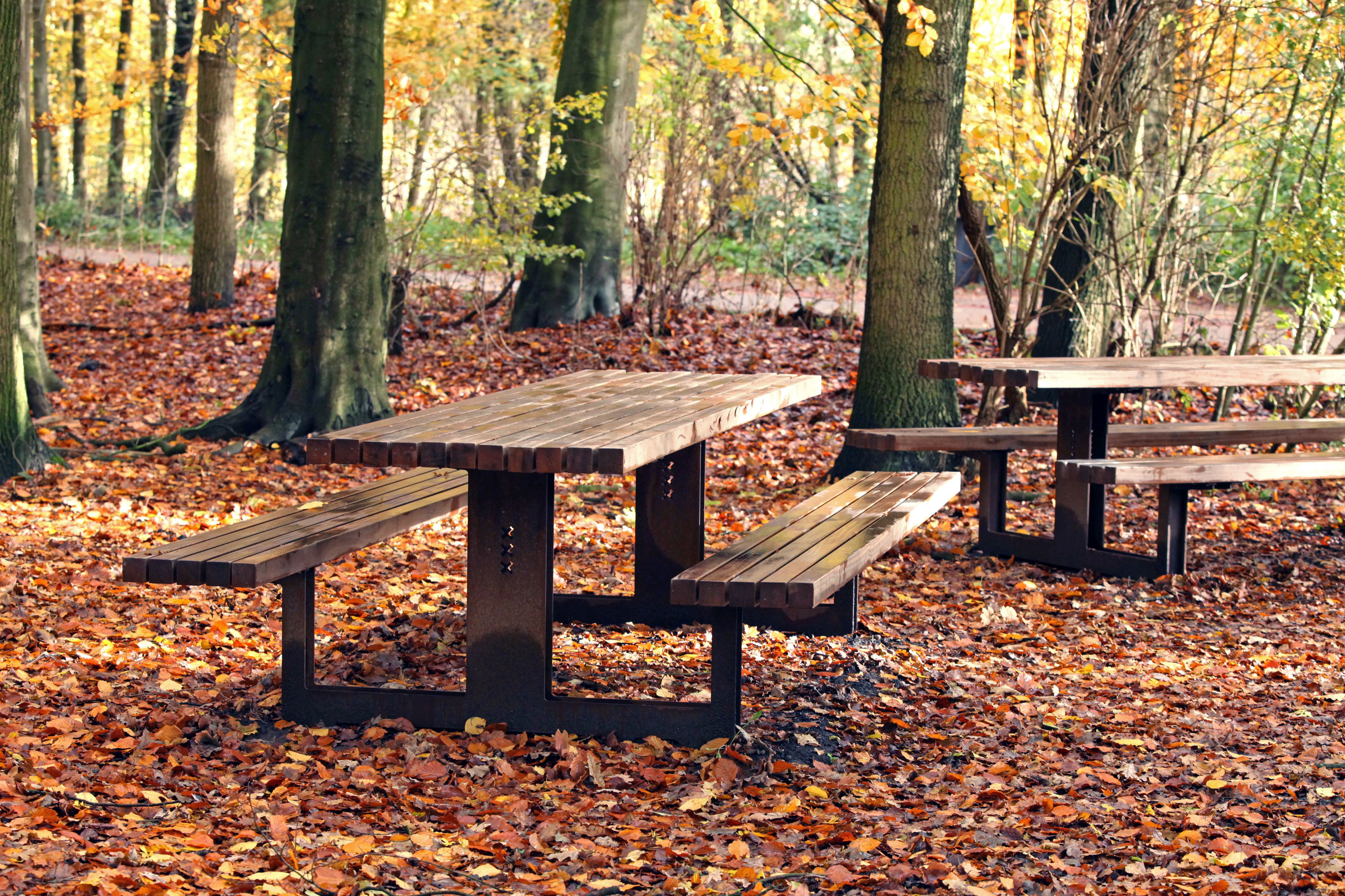 Picnic table Amsterdamse Bos